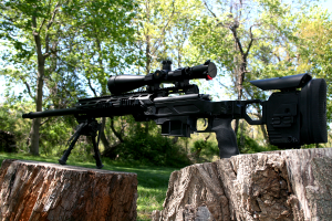 Stalker MK13 300WM